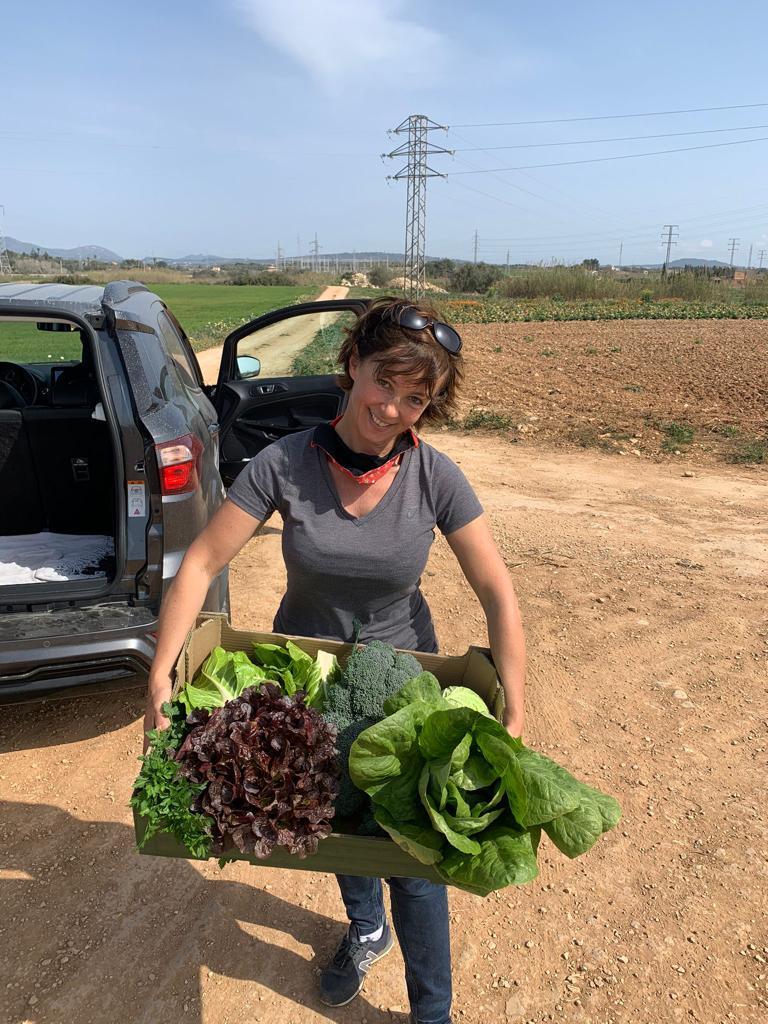 Nicky Neumann erntet fleißig Obst und Gemüse um so die Hilfsorganisationen noch mehr zu unterstützen.