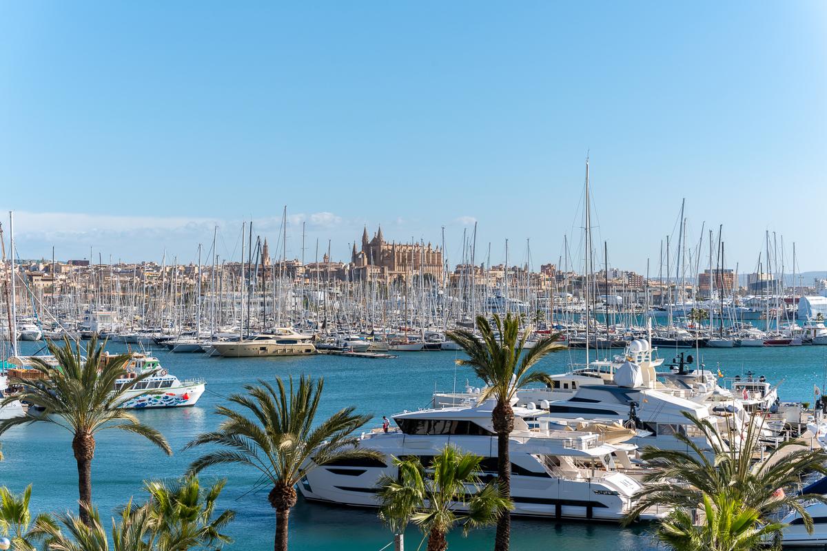 Palma City mit Blick auf den Yachthafen und die Kathedrale.