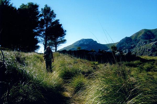 Wandern auf dem Galatzò auf Mallorca