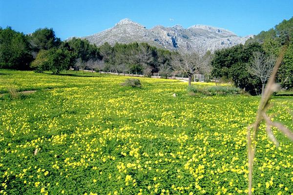 Wanderung Tramuntana Mallorca