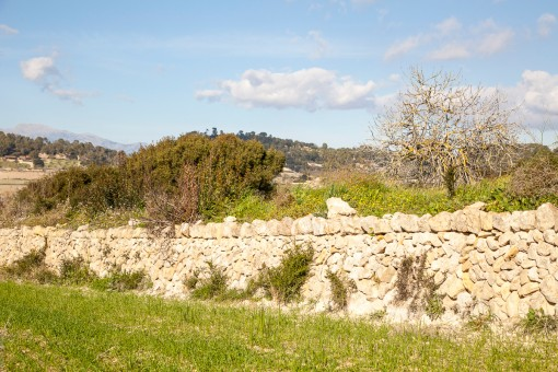 Die schöne Trockenmauer