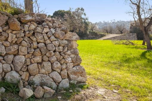 Anfang der Mauer mit Blick auf die Eingangsrampe