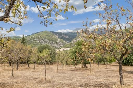 Renovierungsbedürftige Casitas auf 2 großen Grundstücken mit fantastischem Blick in die Tramuntana
