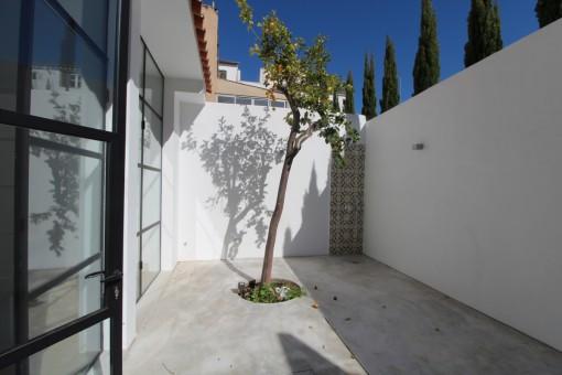 Sanierte charmante Erdgeschosswohnung mit Terrasse in Palma