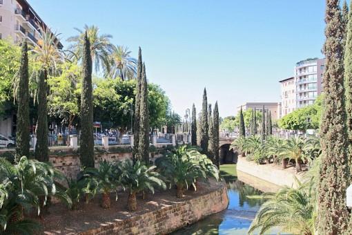 Blick auf den Paseo Mallorca