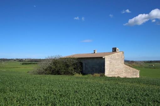 Grundstück in erhöhter Lage mit tollem Blick in Maria de la Salut