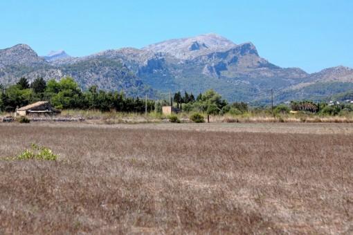Alternative Ansicht des Grundstücks