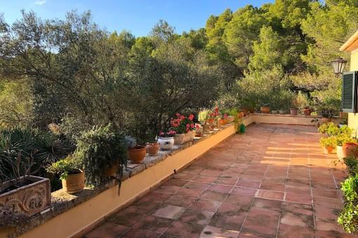 Weitere Terrasse