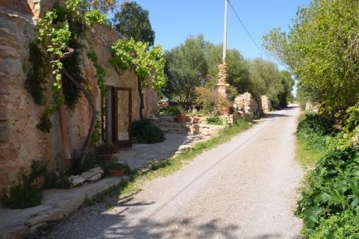 Zufahrt und Eingang