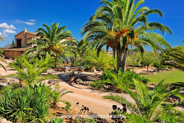 Fincaanwesen mit Gästehaus und Reitstall umgeben von einem idyllischen Palmengarten
