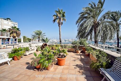 Duplex - Luxuswohnung in Palma - direkt am Paseo Maritimo