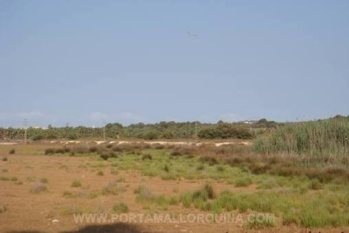 Großzügiges Grundstück von 11 ha