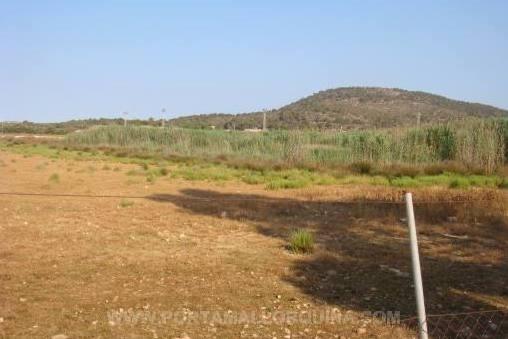 Großes Grundstück mit Potenzial für Wohn-oder gewerbliche Projekte