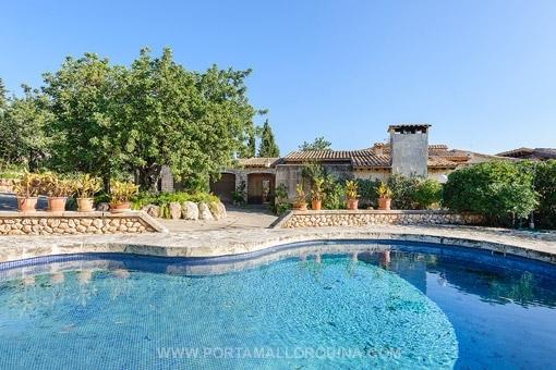 Der Pool ist von einer Terrasse umgeben