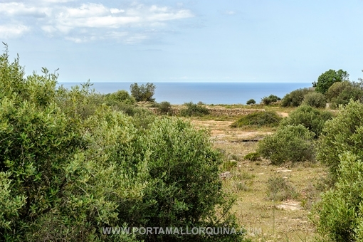 Grundstück in erster Meereslinie mit Traumblick in Bestlage - Sa Torre