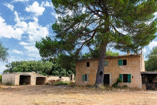 Grundstück mit Finca-Ruine und Meerblick nahe Artà