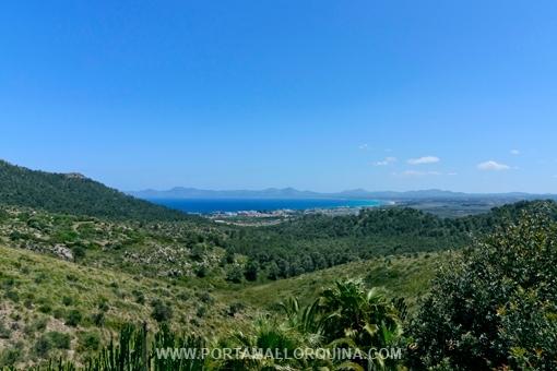 Blick auf die Bucht von Alcudia bis nach Cap Farrutx