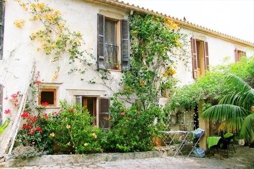 Wunderschöne Fassade mit Rankpflanzen