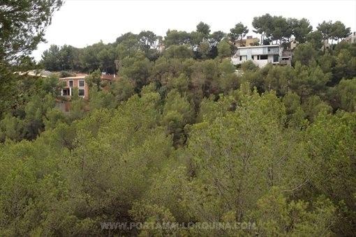 Bebaubares Grundstück von 1228 qm in einer sehr ruhigen Gegend in Costa den Blanes