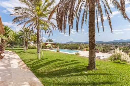 Schön angelegter Garten mit Palmen