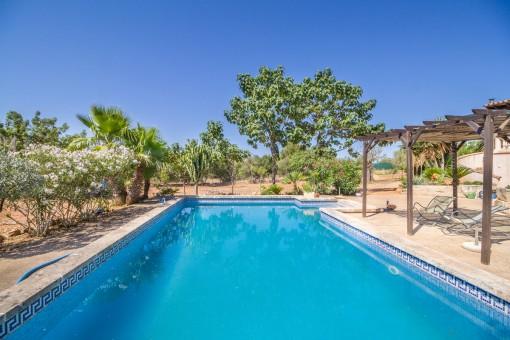 Schöner Pool um den Sommer zu genießen