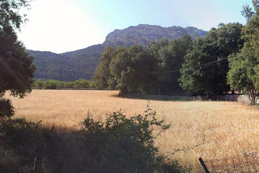Eines der letzten Baugrundstücke in der Sierra de Tramuntana mit Blick auf die Berge