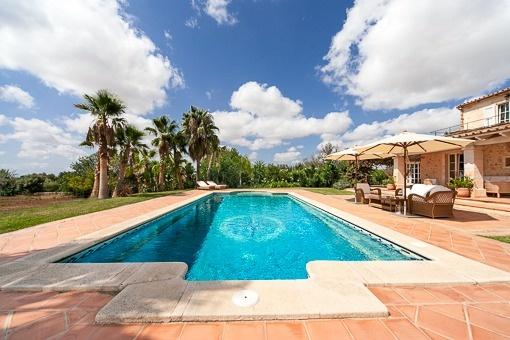 Fantastischer Poolbereich mit Palmen