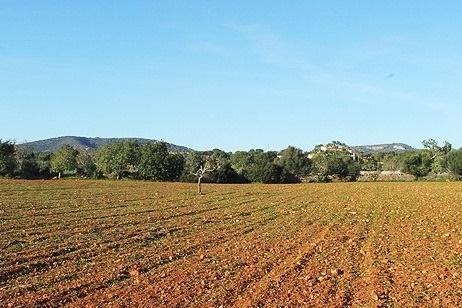 Herrliches Baugrundstück mit Basisprojekt nahe Santanyí