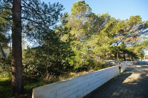 Grundstück mit Meeresnähe im Norden der Insel in Son Serra de Marina in der Bucht von Alcudia