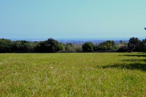 Traumgrundstück mit Meer- und Panoramablick bei S`Alquería Blanca