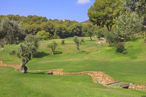 Weitläufiges Grundstück für einen Golfplatz