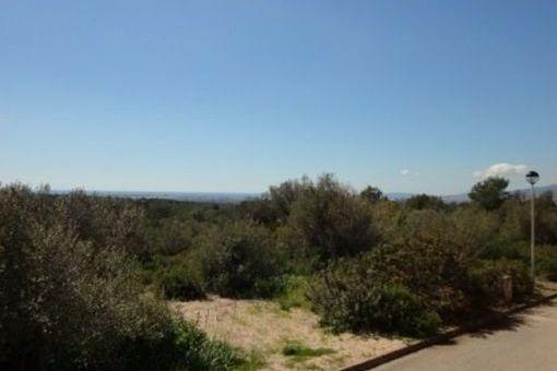 2.000 qm großes Grundstück mit Blick auf die Bucht von Palma in ruhiger Gegend von Portol