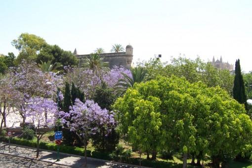 Zentral gelegene Wohnung in Palma - einfach ausgestattet, aber exzellente Lage in Santa Catalina