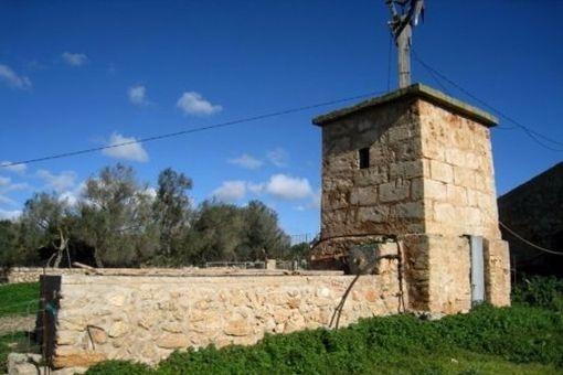 Rustikale Mühle
