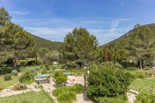 Blick auf den mediterranen Garten mit verschiedenen Pflanzen