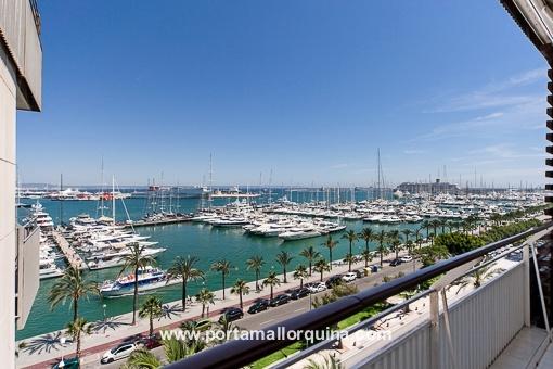 Fantastisches, kleines Penthouse mit traumhaftem Blick auf den Hafen und die Kathedrale am Paseo Maritimo