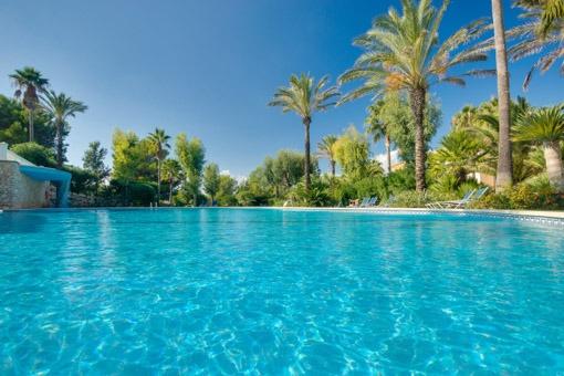 Mediterraner Poolbereich