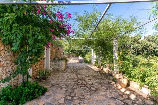 Romantische Terrasse mit Pflanzen