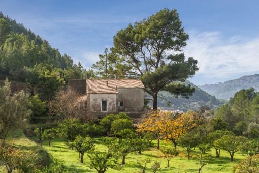 Renovierungsbedürftige Finca mit mehr als 25 Hektar Land und Herrenhaus
