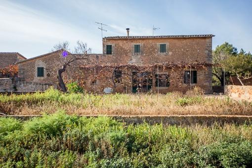 Großes Grundstück mit einer rustikalen Finca in der Umgebung von Son Ferriol
