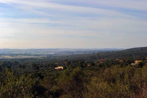 Grundstück von 7.500 qm mit Blick auf das Meer und die Bucht von Palma in der Urbanisation Puntiró