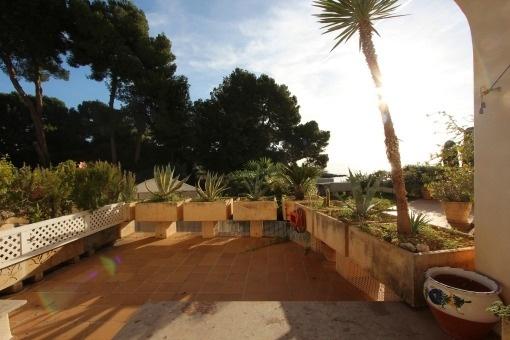 Charmante Wohnung mit direktem Meerzugang in erster Meereslinie in Son Caliu