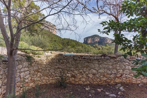 Garten mit einer Mauer aus Natursteinen umgeben