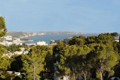 Grundstück mit Meerblick oberhalb von Paguera