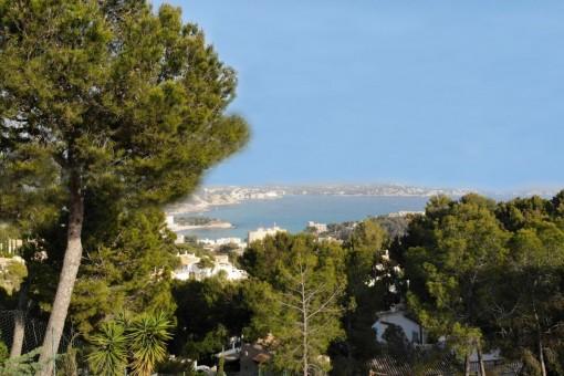 Das Grundstück bietete einen fantastischen Panoramablick