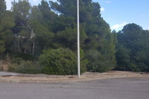 Grundstück in der Nähe vom Golfplatz in Santa Ponsa