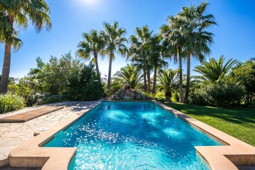 Idyllischer Poolbereich mit Palmen