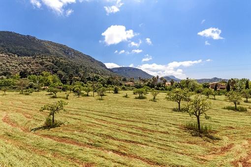 Einmaliger Landschaftsblick vom Grundstück