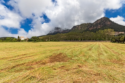 Blick auf die Berge vom grundstück