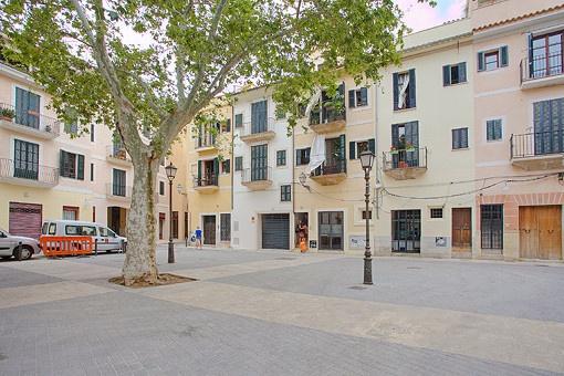 Schöne, helle Erdgeschosswohnung in der Altstadt von Palma